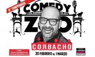 comedy zoo